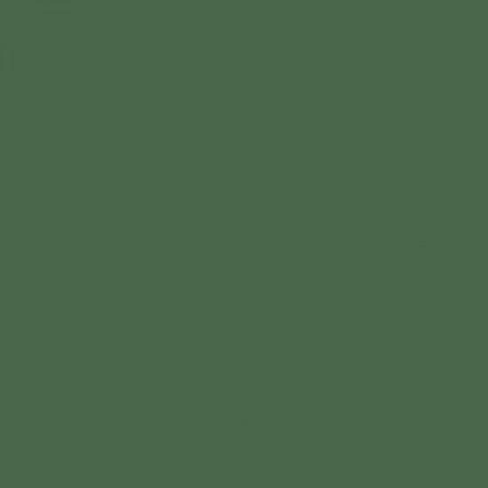 PACTRA A033 Medium Green FS34102