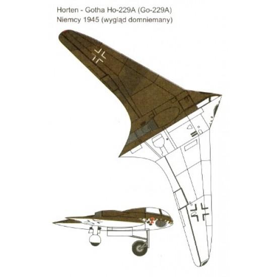 Horten Ho 229a