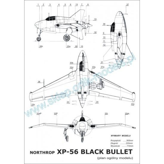 011.  Northrop XP-56 Black Bullet
